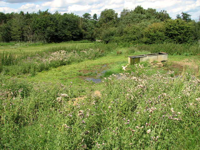 Livestock watering trough by Broom Covert, Leiston