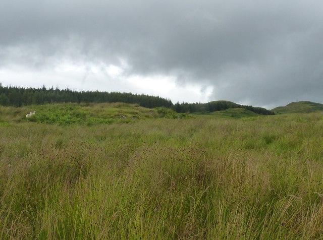 View across grazing land, Cruim Leacainn masts just visible
