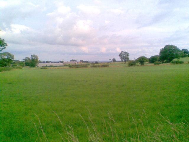Farmland near Plaistow