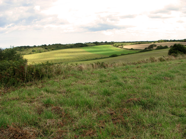 Undulating fields east of The Hangs, Cley