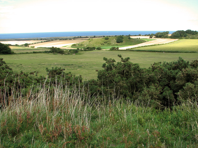 Great Hulver Hill as seen from The Hangs, Cley
