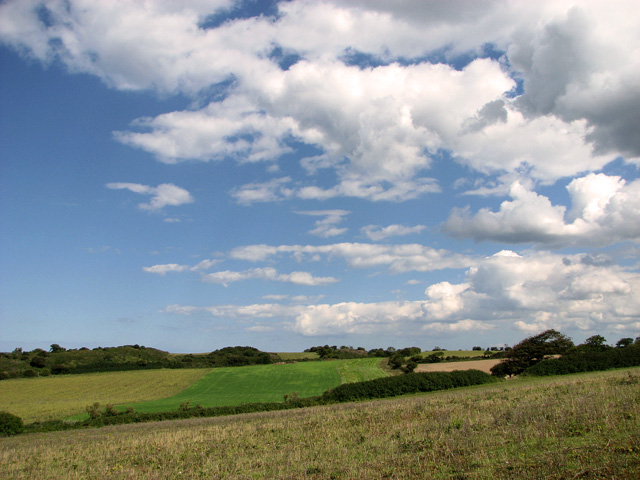 Harvested fields east of The Hangs, Cley