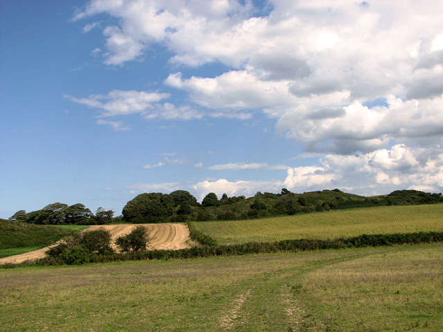 View towards Scrib Hill, Cley