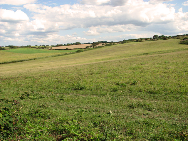 Farmland east of The Hangs, Cley