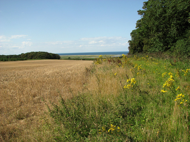 Harvested field west of Crockley's Plantation, Cley