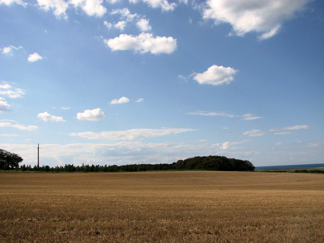 View across harvested field east of Chicken Planting, Cley
