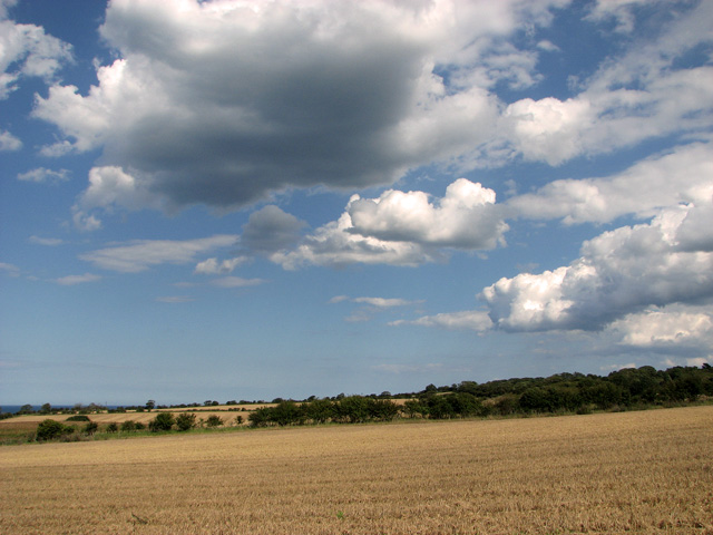 Big sky over harvested fields, Cley