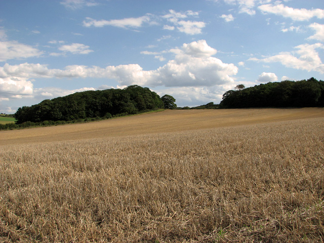 Harvested field by Barn Drift, Cley