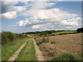 TG0543 : Farm track east of Barn Drift, Cley by Evelyn Simak