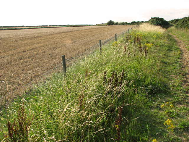 A field-footpath boundary - path to Wiveton Downs