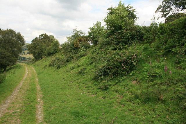 Offa's Dyke near Newcastle