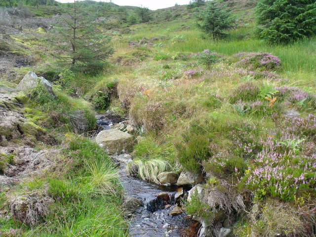 Upstream on wee burn near top edge of clearfell in Loch Ard Forest