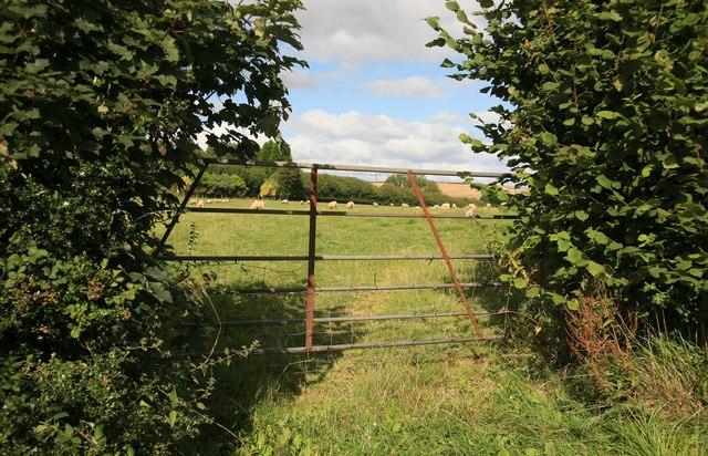 A view through the gate