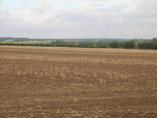 Farmland, Wadworth Carr