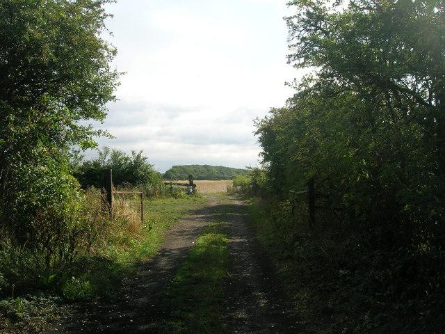 End of Stancil Lane