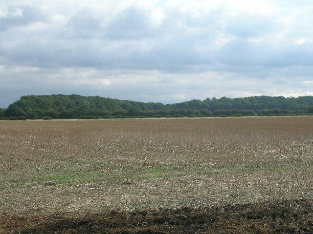 Farmland, Stancil Carr