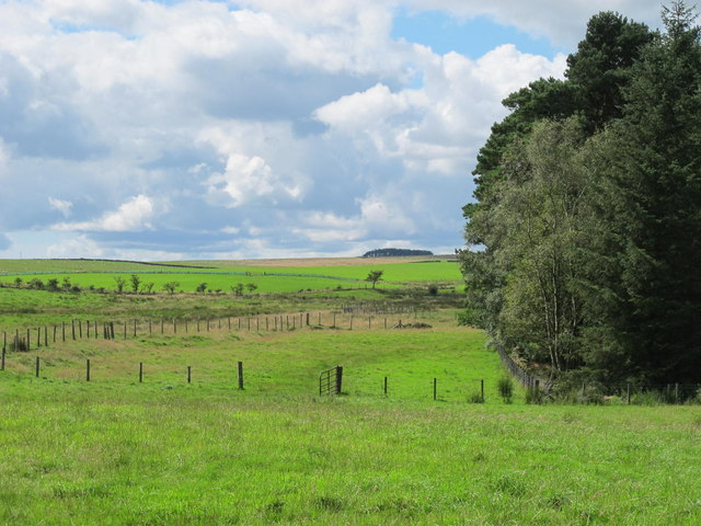 Farmland north of The Paise