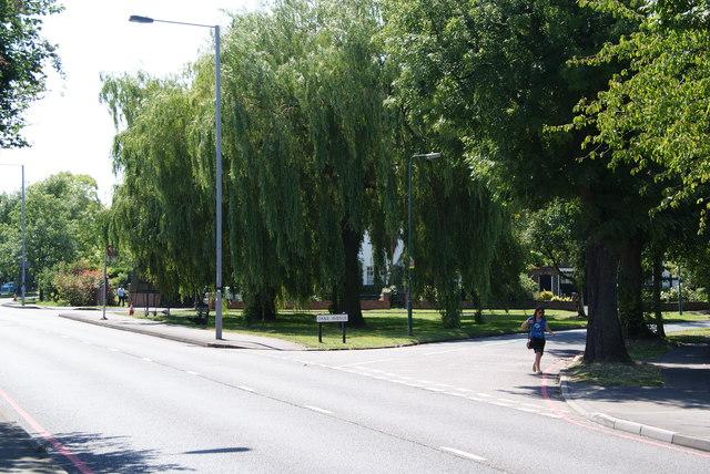 Oaks Avenue, North Cheam