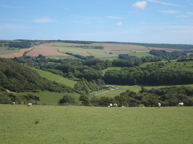Fields near Meadowdown
