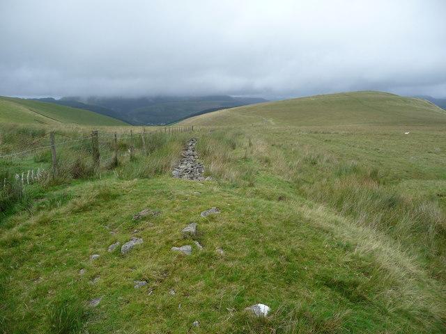 Upland path towards Foel y Dyffryn