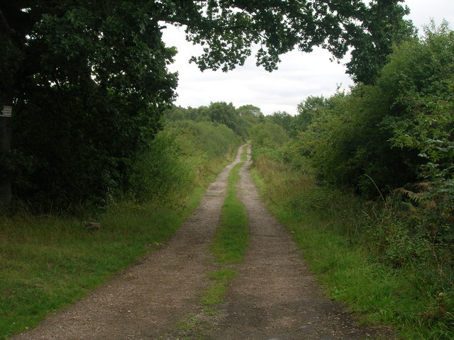 Farm track (footpath) off Hurst Lane