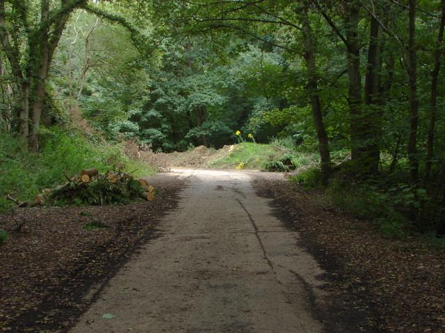 Military road, Deepcut