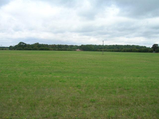 Farmland off Hurst Lane