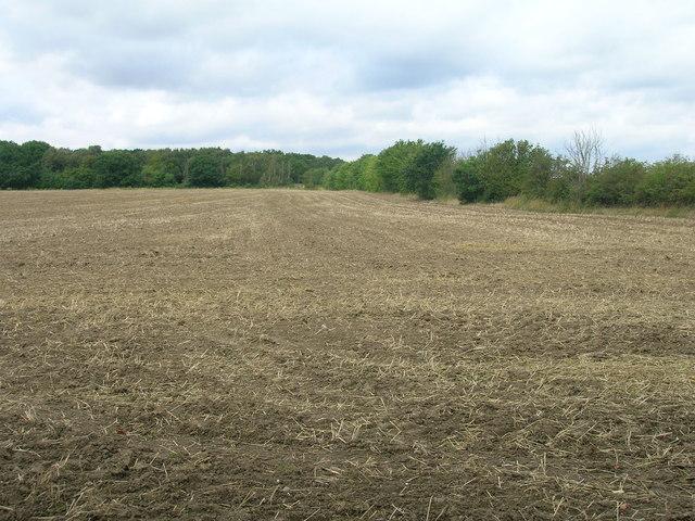 Farmland near Robin Hood Airport