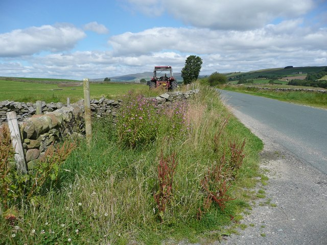 Paley Lane, Giggleswick