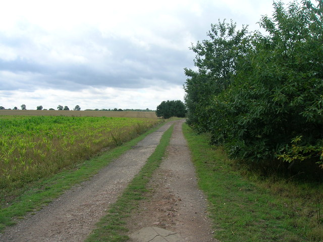 Farm track towards High Common Lane