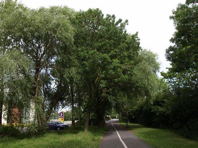 Dual purpose path by Herluin Way