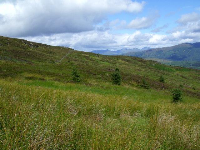 Looking across the upper part of Loch Ard Forest near Aberfoyle