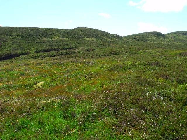 Looking up ridge system towards Stob a' Choin Duibh