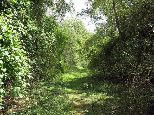 Bartlow: trackbed of the Audley End Branch Line