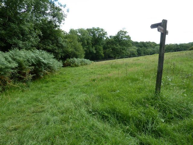 High Weald Landscape Trail heading for Cob Brook