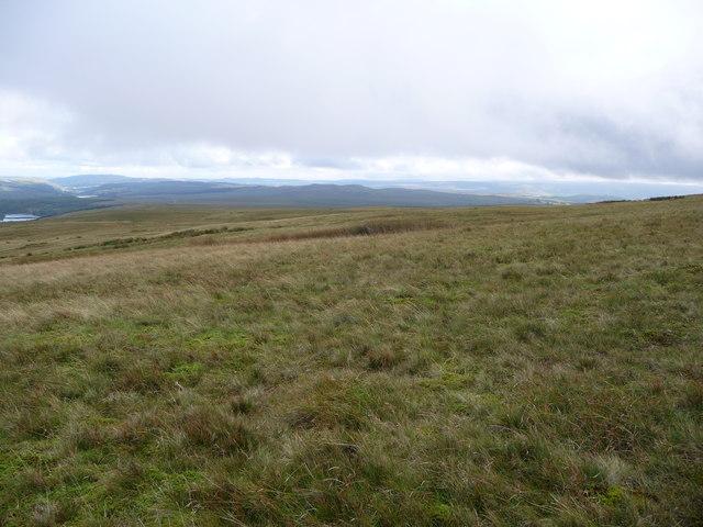 Hillside on Cefn yr Henriw