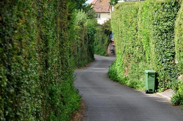 Porlock : Sparkhayes Lane
