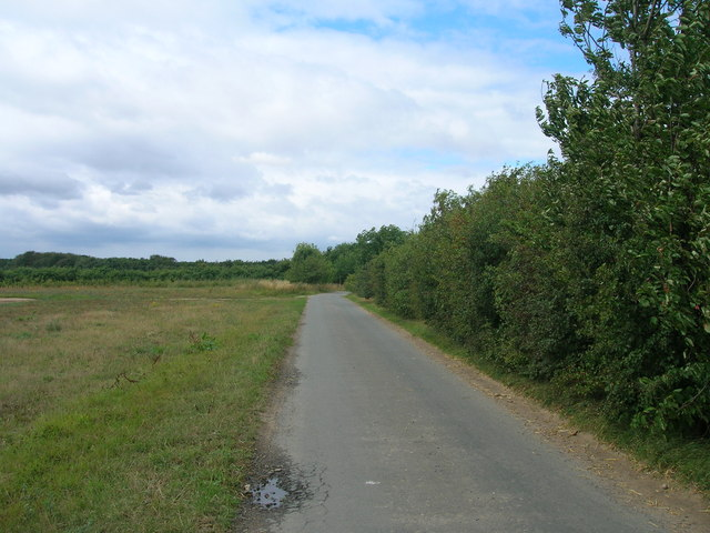 Martin Lane towards Bawtry Forest