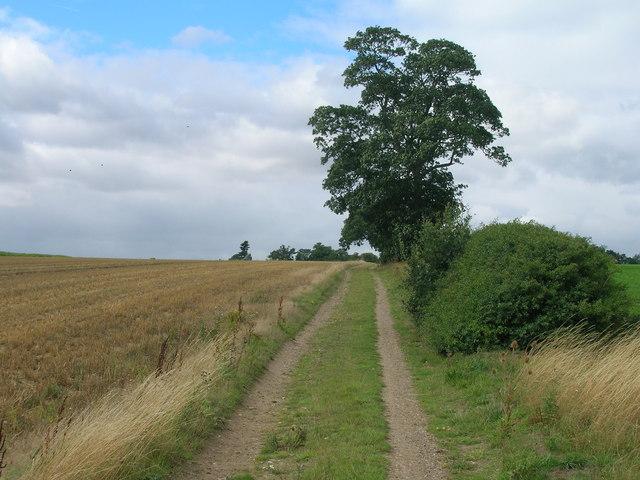 Farm track towards the B6463