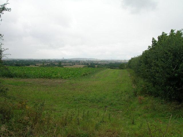 Farmland near Limpool Farm