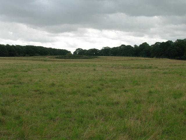 Farmland and woodland off the B6463