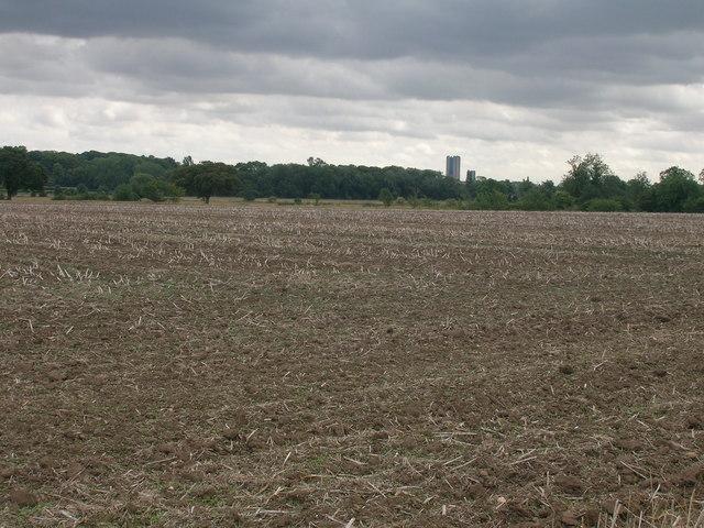 Farmland off Common Lane