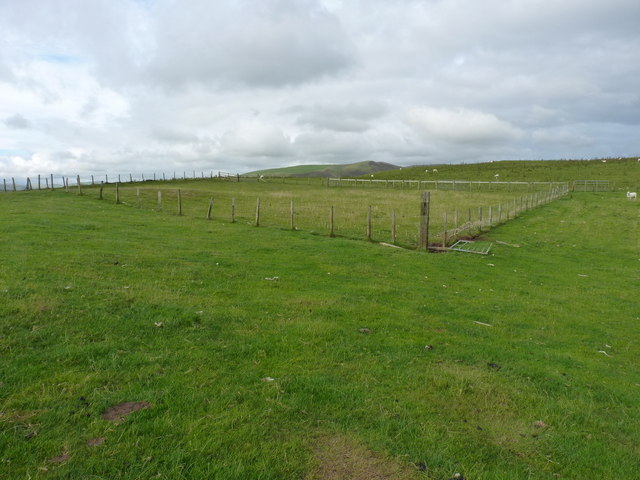 Fenced enclosure and a sheepfold
