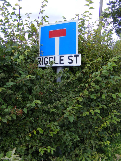 Riggle Street sign
