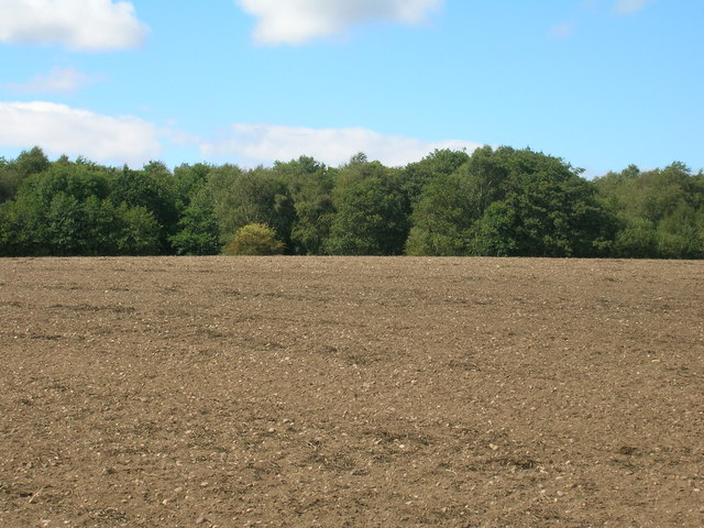 Farmland near Bircotes