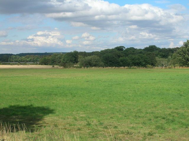 Farmland off the A638