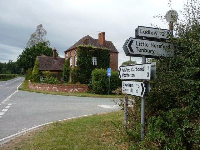 Serpent crossroads
