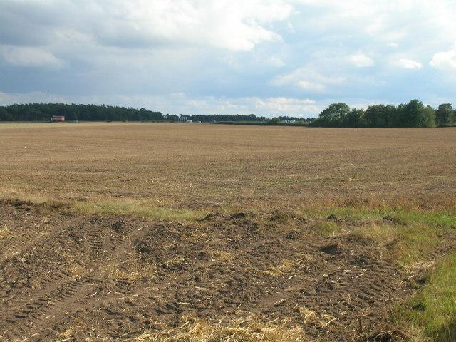 Farmland off Long Brecks Lane