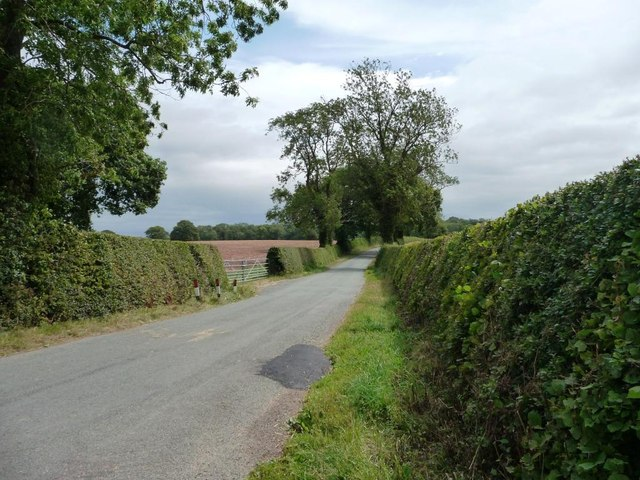 The lane to Bleathwood