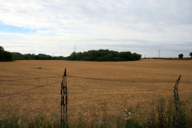 Harvested field near Hipsey Spinney